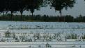 Aspergeveld, 24 juni 2006