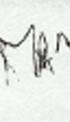 Marja's handtekening op 20 november 2008